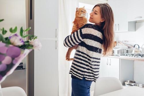 女性に部屋で抱っこされている猫