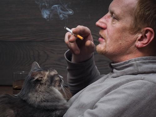 タバコを吸っている男性に抱かれる猫