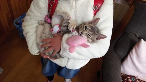猫を抱きしめるこども