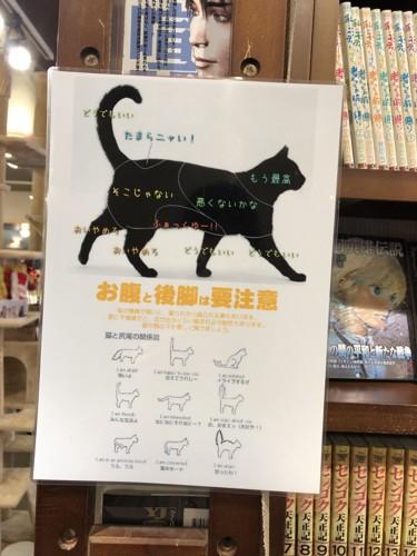 猫の取扱説明書