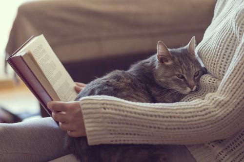 本を読む人の上に乗っている猫