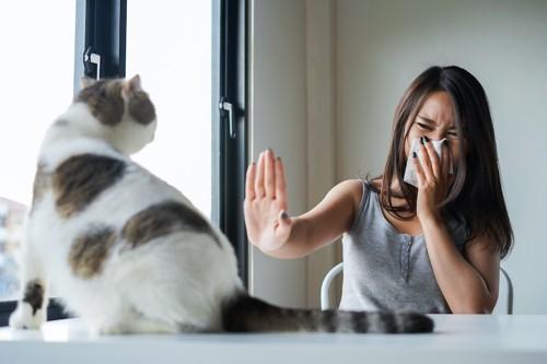ティッシュで鼻を押さえて猫を拒否する女性