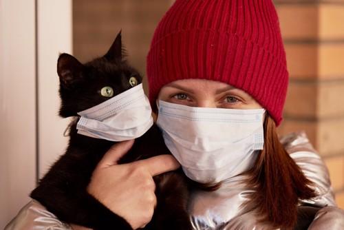 マスクをする猫と人