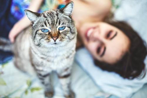 ベッドに横になる女性と座る猫