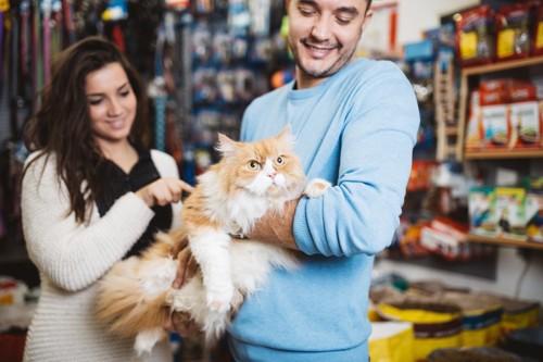 男性に抱きかかえられている猫とペットショップ店員