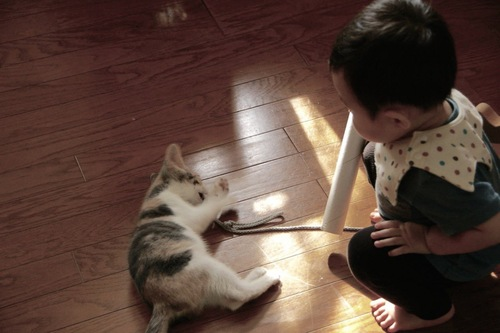 小さな子どもが好きなミーコ