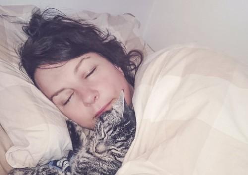 飼い主と一緒に布団で眠る猫