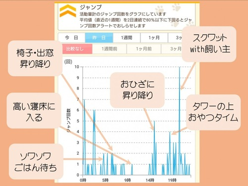 ジャンプのグラフ