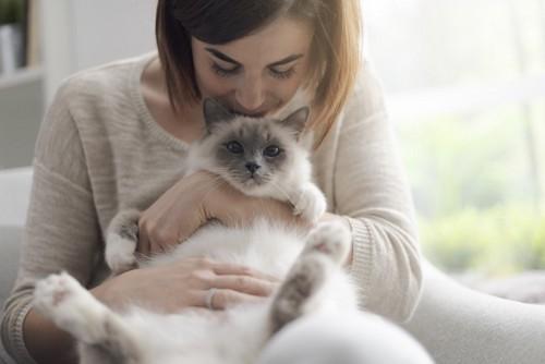猫を抱っこする人