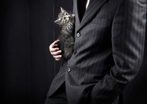 子猫を持ったスーツの男性