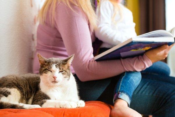 女性の隣にいる猫