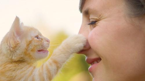 女性の顔にパンチする猫