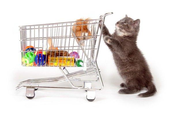 おもちゃが入ったカートにつかまり立ちする猫