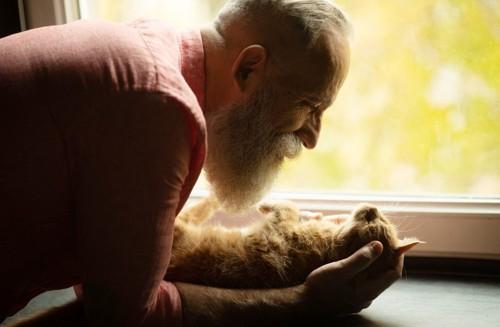 リラックスしている猫と老人