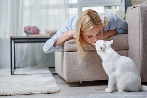 女性の鼻に鼻を近づける猫