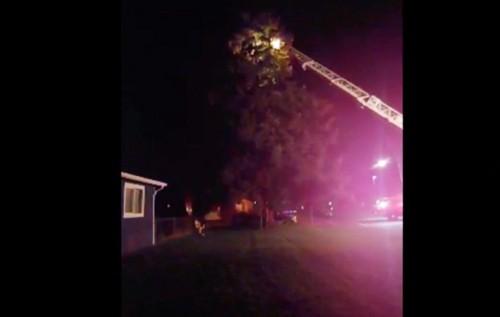 家族を救助する消防隊
