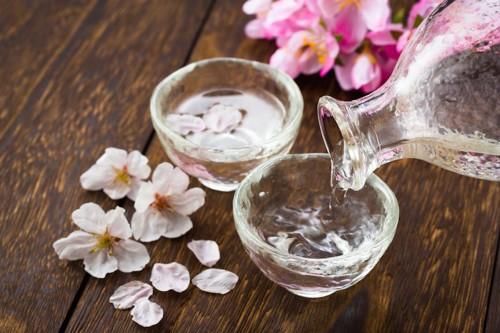 グラスに注がれる日本酒と桜の花びら
