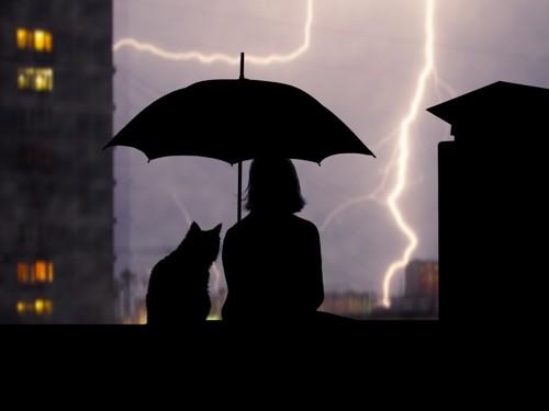 雷と猫と傘をさす人