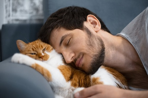 猫の背中に寄りかかる男性