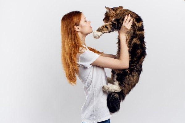 女性が大きな長毛種の三毛猫を抱っこする