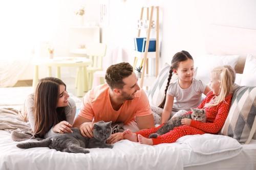 4人家族と猫