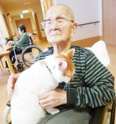 入居者のおじいさんに抱っこしてもらっている猫の太郎くん