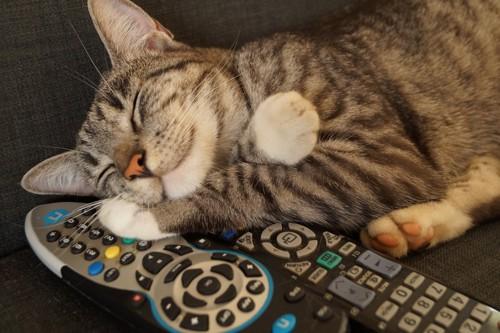 リモコンを枕にする猫