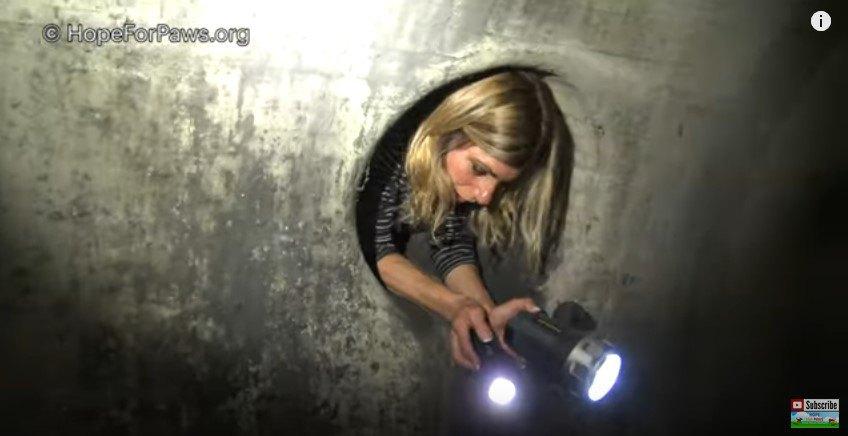 下水道管をはう女性