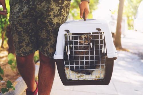 キャリーに入った猫を運ぶ人