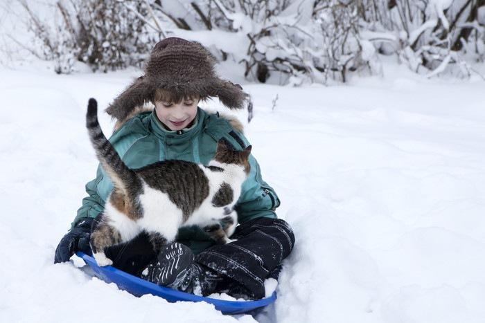 雪と子供と猫