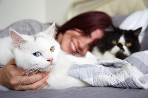 ベットでくつろぐ女性と二匹の猫