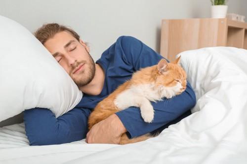 男性と寝る猫