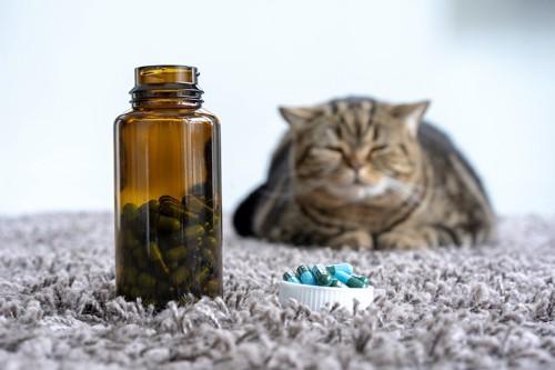 蓋のあいた薬瓶の後ろで眠る猫