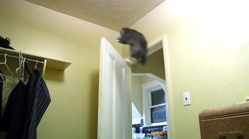 ドアにジャンプ