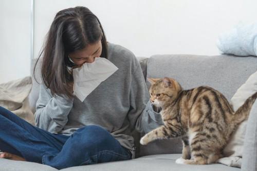 猫のそばでくしゃみをする女性