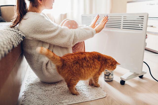 猫の寒さ対策グッズレビュー