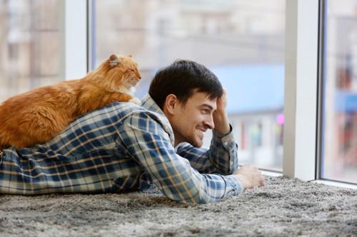 男性の背中で寝る猫