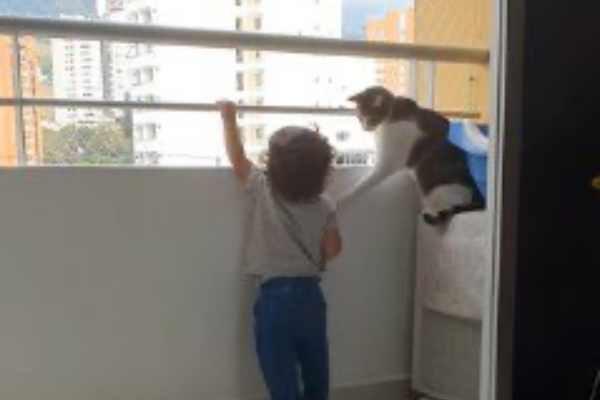 幼児の右手を手すりから降ろさせた猫
