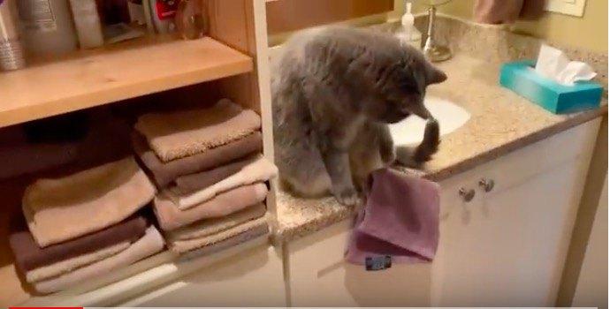 爪にタオル
