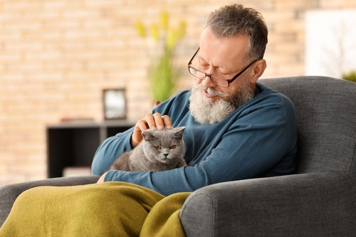 ソファーに座って膝に猫を載せている男性