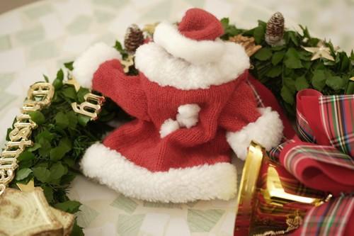 クリスマスの衣装とクリスマスの飾り