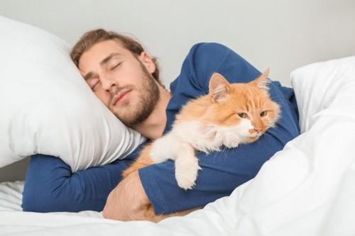 寝る猫と飼い主