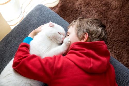 少年とじゃれる白猫