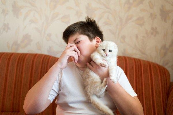 白猫を抱いて鼻を押さえる男性