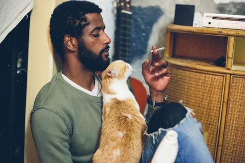 喫煙する人と猫