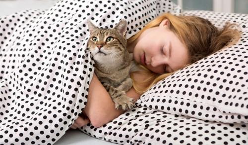 水玉柄のベッドと猫