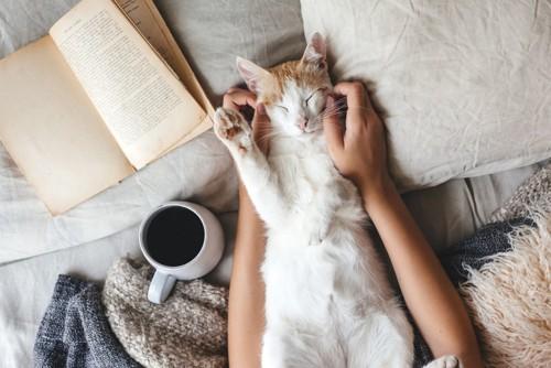 コーヒーと猫を撫でる人