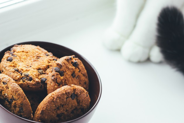 猫の足とクッキー