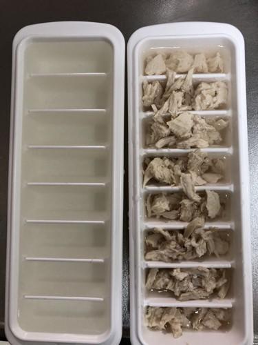 ほぐした鳥肉を製氷皿にいれているところ