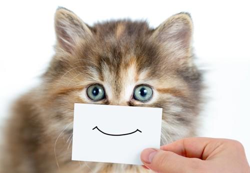 口の前に笑た口のイラストをあてられている猫
